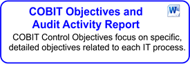 COBIT Objectives And Audit Activity Report