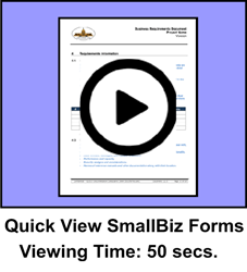 Quick View SmallBiz Package Forms