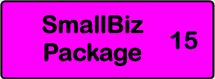 SmallBiz Package of 15 forms